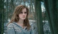 HP7 Hermione Granger