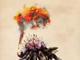 Feuerkrabbe