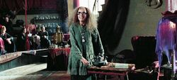 Trelawney teaching