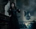 Bellatrix battleoh1.png