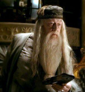 Dumbledore z dziennikiem