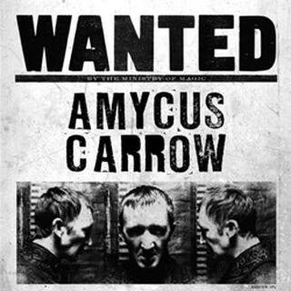 Плакат о розыске Амикуса