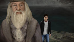 Harry-potter-wii-screenshot-6