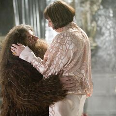 Хагрид и мадам Максим
