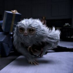 Demiguise