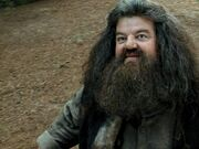 HagridforêtHP3