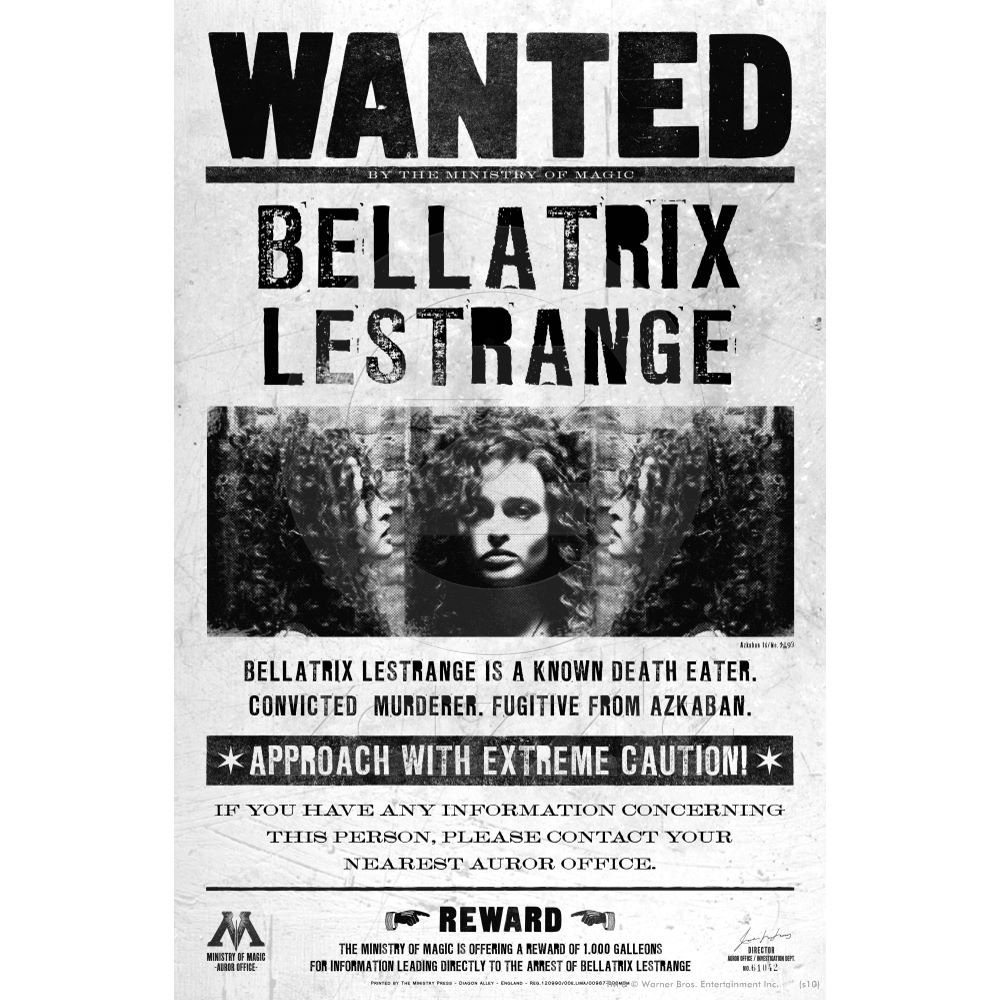 14:11, July 12, 2010 ...  Free Wanted Poster Maker