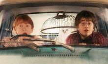 Harry-ron-incar