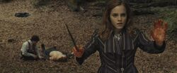 Hermione casting protective enchantments