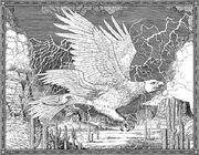 Thunderbird FB-2017