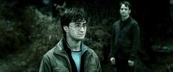 Harry-potter7-james harry