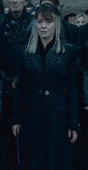Narcissa Malfoy's second wand | Harry Potter Wiki | FANDOM ...