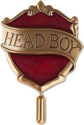 HeadBoyPin