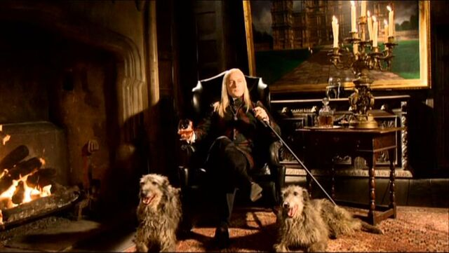 File:Lucius at Malfoy Manor.JPG