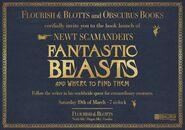 'Fantastic Beasts and Where to Find Them' Launch Invitation