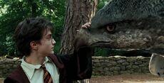 Harry Potter Buckbeak