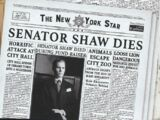 The New York Star