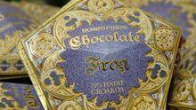 Chocolate Frog1