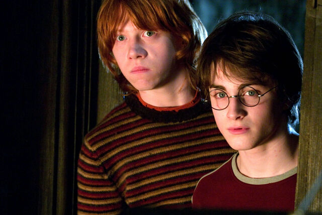 File:Harry and Ron GOF promo.jpg