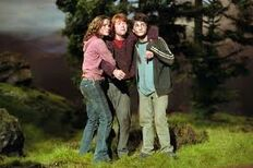 Harrypotter78