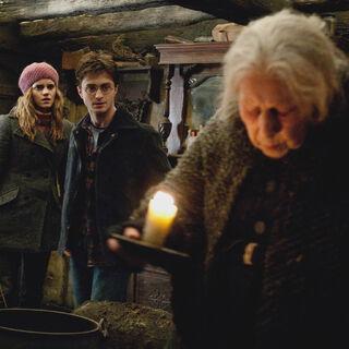 Гарри и Гермиона в доме Батильды