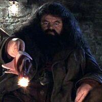 Hagrid wand