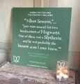 Albus Severus Quote Card 01.jpg