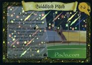 QuidditchPitchFoil-TCG