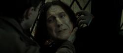 Snape's Death..
