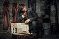 Fantastic-beasts-2-images-7