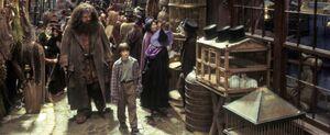 Hagrid i Harry Pokatna