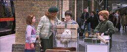 Harry-potter1-platform