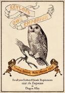 MinaLima Store - Eeylops Owl Emporium