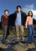 14. Ron, Harry, Hermione;