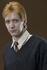 George Weasley Profile