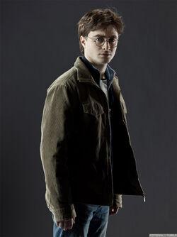 Harry Info