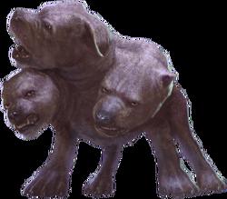 Three-Headed Dog WU