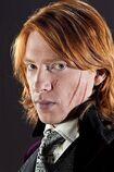 Bill Weasley 2