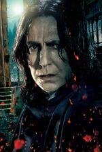 Snape main