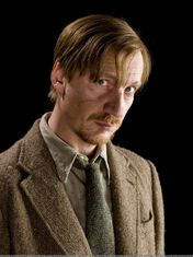 Remus lupin garniak