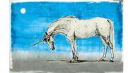 Unicorn slideshow