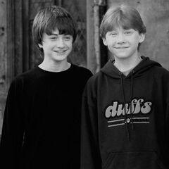 Руперт и Дэн
