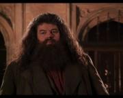 Hagrid do azkabanu!