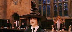 Harry Potter e o Chapéu Seletor