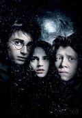 17. Harry, Hermione & Ron