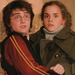 Фотография Гермионы и Гарри, появившаяся в «Пророке»