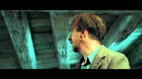 Harry Potter and the Deathly Hallows part 1 - the Order at the burrow after the sky battle (HD)