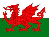 Équipe nationale de Quidditch du Pays de Galles
