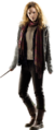 Hermione DH2.png