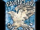 Ravenclaw Quidditch team